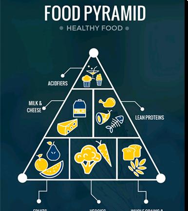 Template - Food Pyramid