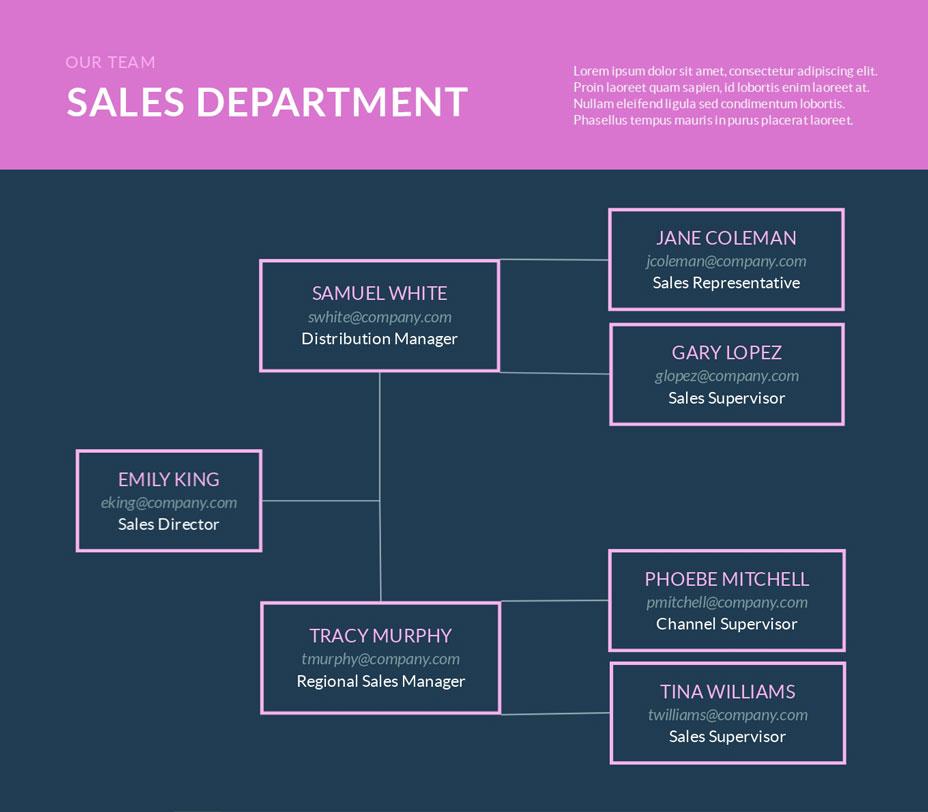 sales department organizational chart template visme